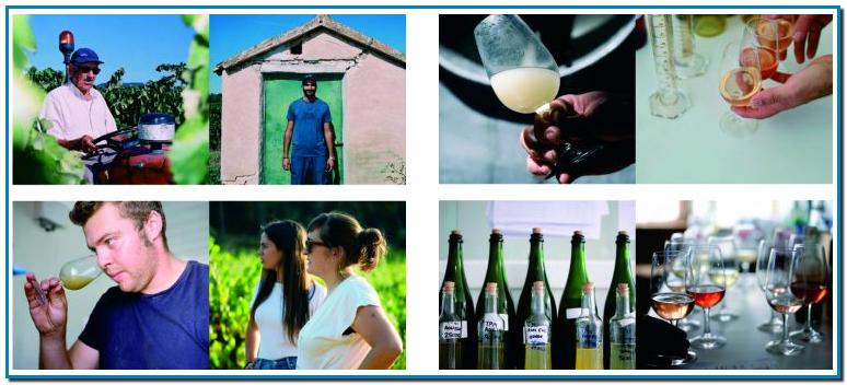 LES PERSONES Sumen totes i cadascuna de les persones entregades a aquest projecte. La cura de la vinya, la vinificació, la criança… Tots i cadascun de nosaltres aporta el seu coneixement i experiència, crucials per a aquest projecte. LA RECERCA CONSTANT La investigació, prova i error, l'aprenentatge i l'insaciable ambició per millorar és el que ens permet augmentar la qualitat dels nostres vins any rere any. EL MEDI AMBIENT Implementar una agricultura sostenible és la nostra responsabilitat. Per això, és imprescindible el cultiu ecològic i l'observació contínua del camp.Tots els nostres caves i vins tenen la certificació orgànica del CCPAE.