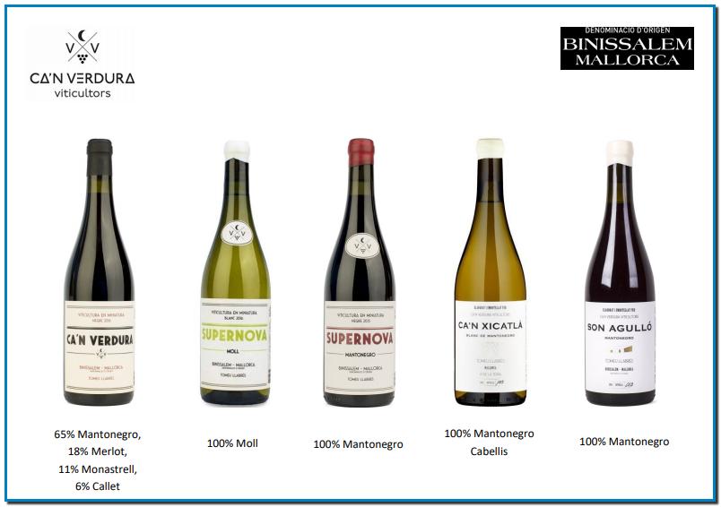 HISTÒRIA DE CA'N VERDURA VITICULTORS. Els orígens de Ca'n Verdura es remunten sis generacions enrere, treballant i cultivant les vinyes de Binissalem entre possessions i cellers que durant segles han envoltat el poble vitivinícola per excel·lència de l'illa de Mallorca. Arran d'aquesta tradició, el projecte només es podia entendre d'una manera, elaborant vins amb caràcter mallorquí, varietats autòctones com a Mantonegro, Callet i Moll; en definitiva, vins de Binissalem. La viticultura dels últims anys ha anat introduint varietats d'altres zones, proclamant-les nobles en detriment de les autòctones. La idea de Ca'n Verdura és rompre amb aquesta moda i demostrar que amb el Mantonegro es poden fer vins amb gran representativitat i personalitat. El 2010 comença l'aventura de Ca'n Verdura, sense celler propi, utilitzant Mantonegro de la finca del padrí, recuperant la varietat i adequant-la als mètodes moderns d'elaboració. Va ser el primer pas del qual seria, dos anys després, el Celler Ca'n Verdura. Aquest any es van elaborar prop de 700 botelles. Arribà 2012 i s'obriren les portes de Ca'n Verdura, en un antic garatge del centre del poble de Binissalem. Amb celler propi, s'inicia l'elaboració de la família de vins de Ca'n Verdura, cercant els matisos que poden oferir les diferents delimitacions vitícoles de la regió de Binissalem. Durant els següents anys, Ca'n Verdura ha anat madurant, mantenint sempre la seva essència original, el caràcter i la tradició familiar, alhora que s'han anat adequant a les exigències de cada anyada. D'aquesta manera, s'han pogut plasmar les idees i intencions preservades des de l'inici.